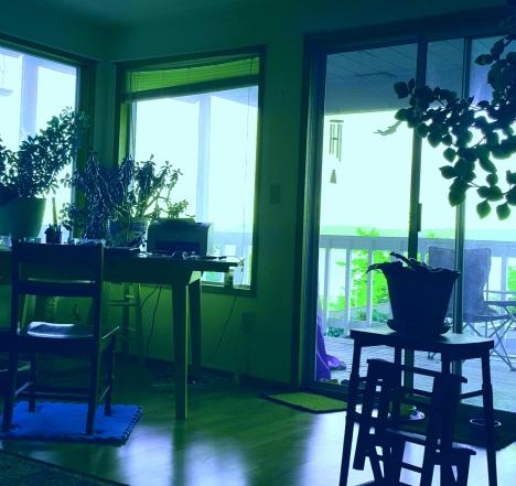 desk view 2.jpg